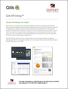 Qlik Extended Solutions | The Copley Consulting Group